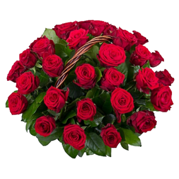 35 Красных Роз в Корзинке