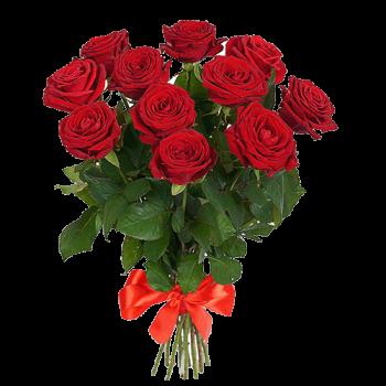 Букет из 9 Красных (Белых, Кремовых, Розовых - на выбор) Роз