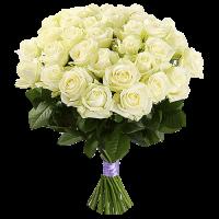 35 Белых Роз